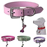 Lushpetz Hundehalsband mit Knochen-Charme Erhältlich in Rosa, Blau, Rot, Grün, Weiß oder Lila für XS, kleine, mittlere und große Rassen (Klein, Pink)