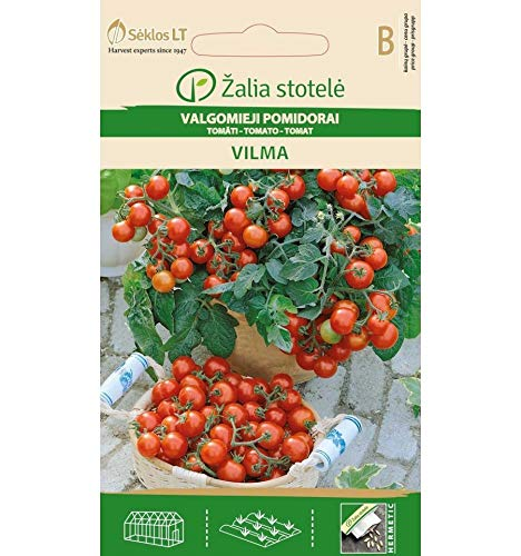 AGROBITS Tomate Vilma LECKER LCONY Round All RED FRUIT100-140