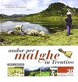 Andar per malghe in Trentino