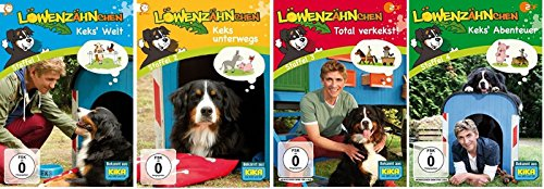 Staffel 1-4 (4 DVDs)