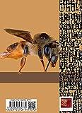Winterbienen im Urftland