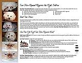 Eye Envy Powder for Dogs & Cats 15mL (0.5oz)