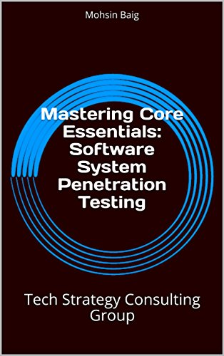 Mastering Core Essentials: Software System Penetration Testing: Tech Strategy Consulting Group (English Edition)