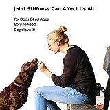 Gelenk Ergänzungsfutter für Hunde | Gegen Arthritisschmerzen, Hüftprobleme, Rheuma, Arthrose & Bewegungsprobleme | Gelenkschutz für Ihren Hund |120 Extra Starke & Kaubare Gelenketabletten - 5