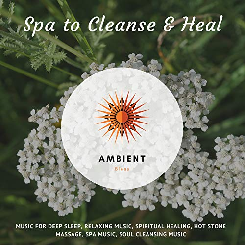 Spa To Cleanse & Heal (Music For Deep Sleep, Relaxing Music, Spiritual Healing, Hot Stone Massage, Spa Music, Soul Cleansing Music) -