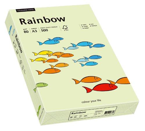 Papyrus 88042588 Druckerpapier Rainbow 80 g/m², A3 500 Blatt hellgrün