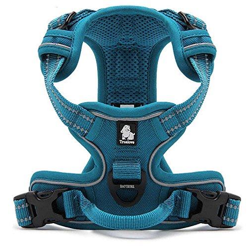 Pettom Einstellbare weich gepolsterter Nein Pull Haustier Hundegeschirr Powergeschirr mit Heavy Duty Griff für Hundetraining oder Walking - Große Hunde Hilfe Brust 49-95 cm variieren von Größe S-M-L-XL (L, Blau)