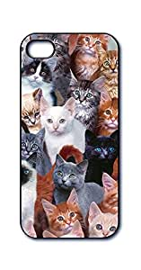 Dimension 9 3D Lenticular iPhone 5/5s Cell Phone Cover - Retail Packaging - Cats Everywhere