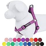 Blueberry Pet Step-in Geschirre Klassisch Einfarbig Hundegeschirr mit Zugentlastung Verstellbar Langlebig - Violett Nylon 42-54cm Brust, Passender Hundehalsband & Hundeleinen erhältlich Separate