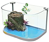 CROCI Eco New Aquarium de Tortue 30 x 20 x 20 cm