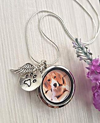 Mémorial du chien Collier médaillon Chaîne ARGENT STERLING et boîte-cadeau - Cadeau de perte d'animal de compagnie cadeau commémoratif pour animaux de compagnie