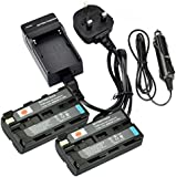 DSTE® 2x NP-F550 Rechargeable Li-ion Battery + DC01U Travel and Car Charger Adapter for Sony CCD-RV100 CCD-RV200 CCD-SC5 CCD-SC5/E CCD-SC55E CCD-SC55 CCD-SC6 CCD-SC65 CCD-SC7 CCD-SC7/E CCD-SC8/E CCD-SC9 CCD-TR1 CCD-TR11 CCD-TR1100E CCD-TR12 CCD-TR18 CCD-TR18E CCD-TR1E CCD-TR2 CCD-TR200 CCD-TR205 CCD-TR215 CCD-TR2200E CCD-TR2300 CCD-TR2300E CCD-TR280PK CCD-TR290PK CCD-TR3 CCD-TR300 CCD-TR3000 CCD-TR3000E CCD-TR3100E CCD-TR311E CCD-TR315 CCD-TR315E CCD-TR317 CCD-TR3200E CCD-TR3300 as NP-F330 NP-F530 NP-F570