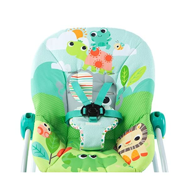 Bright Starts Playful Parade Baby to Big Kid Rocker Bright-Starts Seat can rock back and forth to soothe, or can be set to a fixed position for small babies and older toddlers Full body recline with 2 positions Soothing vibrations 6