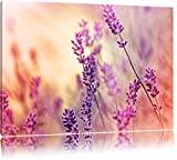 Eleganter Lavendel Format: 120x80 auf Leinwand, XXL riesige Bilder fertig gerahmt mit Keilrahmen, Kunstdruck auf Wandbild mit Rahmen, günstiger als Gemälde oder Ölbild, kein Poster oder Plakat