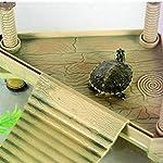 Soccik Reptile Turtle Frog Turtle Platform Pier Durable Plastic Turtle Roof Terrace Floating Pier Floating Rock Aquarium… 11