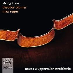 Theodor Blumer: Streichtrio Op. 55 Max Reger: Streichtrio Op. 77b