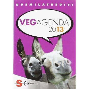 Vegagenda 2013