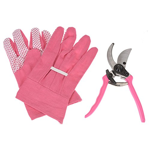 Rebschere mit Handschuhen - pink