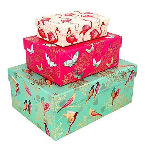 Sara Miller Gold-Hazel Nest von 3 Geschenkboxen und Stichworte 3 pro Packung