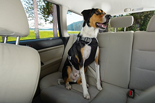 RUFFWEAR Car Safety Harness for Dogs, Miniature Breeds, Adjustable Fit, Size: XX-Small, Obsidian Black, Load Up Harness 8