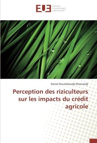 perception-des-riziculteurs-sur-les-impacts-du-credit-agricole
