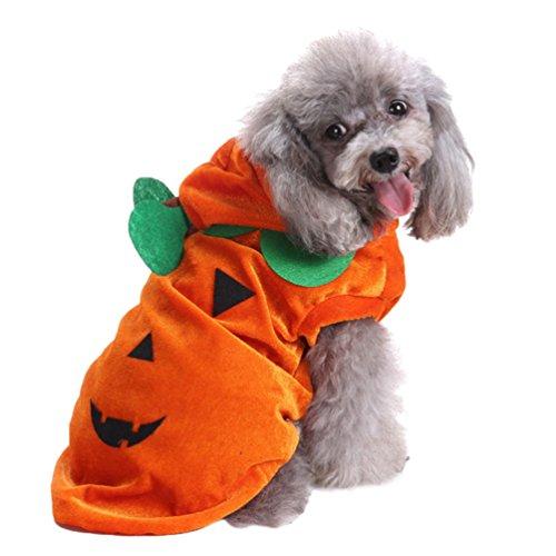 Yuncai Lustige Halloween Haustier Hund Kleidung Weihnachts-Clown Kürbis Spinne Hexe Verkleiden Sich Party Kostüm Cosplay für Katze Als Bild (Kostüm Kürbis Halten Hund)