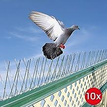 Dissuasori per piccioni for Dissuasori piccioni amazon
