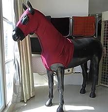 BAX equine Lycra Hood