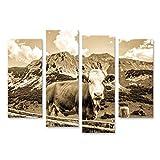 islandburner Bild Bilder auf Leinwand Kühe in den europäischen Alpen - Foto Wandbild, Poster, Leinwandbild OER
