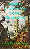 Walden or Life in the Woods (illustrated) (English Edition)