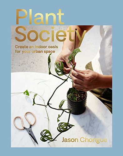 Plant Society: Create an Indoor Oasis for Your Urban Space