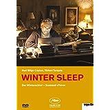 Winter Sleep / Winterschlaf