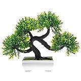 HuaYang Mini Asperges au pin -Topiary Mini arbre Artificielles avec Pot en mélamine pour Décoration ornement (Vert)