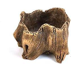 Agente T Vintage florero de hormigón, imitación madera creativo maceta suculentas/Cactus Plant Pot, caqui, grande