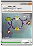 Zellatmung - Energiegewinnung durch Glykolyse, Citratzyklus und Atmungskette - DVD - Lehrfilm für Unterricht und Ausbildung - Hagemann 180231 - Einzel- und Schullizenz