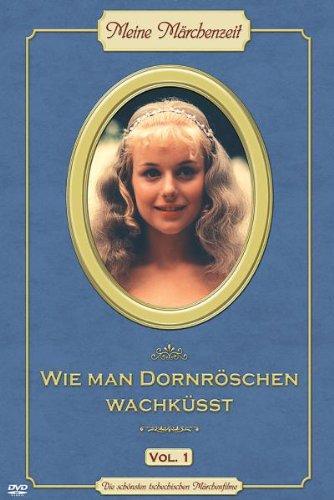 Wie man Dornröschen - Prinz Von Dornröschen Kostüm