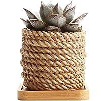 Rachel's 8.5CM Forme des Cordes Sucuulent Cactus Pots de Fleurs Pots de Fleurs Jardinières Conteneurs Boîtes de Fenêtre avec Plateau en Bambou