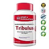 Tribulus Terrestris Kapseln 900 mg Tagesdosis – Erdburzeldorn – Hochdosierte Saponine, Premiumqualität – Erhöht Testosteronspiegel, steigert Muskelaufbau & Potenz – Vegan, 3-Monatskur