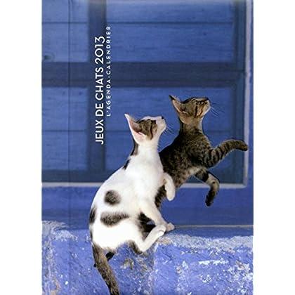 L'agenda-Calendrier Jeux de chats 2013