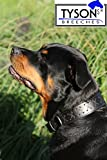 Halsband Leder gr. Hunde Lederhalsband EXTRA BREIT 6,5 cm Braun Zierstich genäht Gr.L 48 - 55 cm