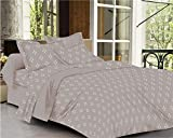 #6: Trance Home Linen 100% Cotton 300TC Premium Printed Queen Fitted Bed Sheet with 2 Pillow Covers (Light Grey White Small Flowers)