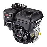 HECHT Benzin-Vertikutierer 5675 Rasen-Lüfter Motorvertikutierer (6,5 PS, 42 cm Arbeitsbreite, 6-fache zentrale Höhenverstellung, 45 Liter Fangkorb, Waslze: 17 Messer)
