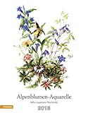 Alpenblumen-Aquarelle Kalender 2018 -