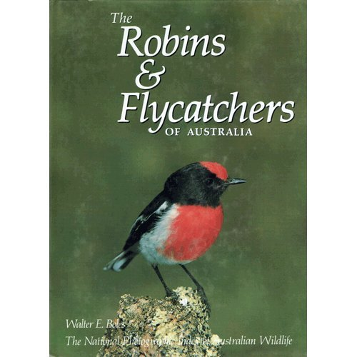 the-robins-and-flycatchers-of-australia