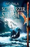 Schwarzer Sturm: Roman (Dark World Saga, Band 2)