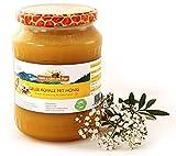 Honig mit frischem Gelee royal von ImkerPur, 1000 g, kaltgeschleudert, das Wertvollste der Biene