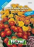 Sementi da fiore di qualità in bustina per uso amatoriale (TAGETE NANA PATULA DOPPIA IN MISCUGLIO)