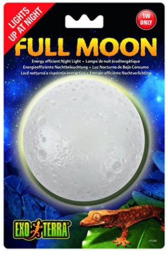 Exo Terra Mondlicht
