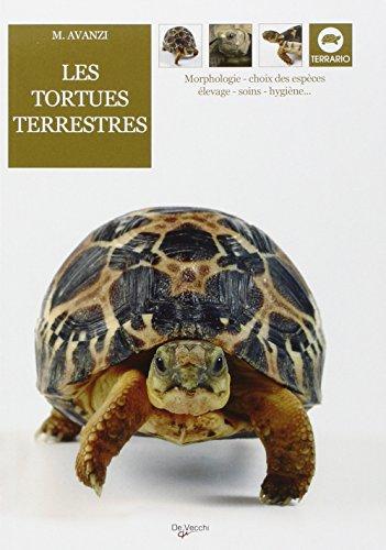 Les tortues terrestres