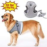 SunTop Atmungsaktives Hundegeschirr aus Weichem Air Mesh Gewebe, Reflektierend mit Hunde Leine Gurt Zugseil